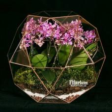 Глобус большой с орхидеей