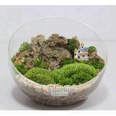 Флорариум скошенный шар с мхами (моссариум)