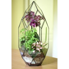 """Флорариум """"Кристалл с орхидеей средний"""""""