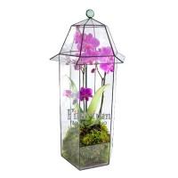 Фонарь для орхидеи