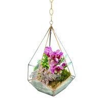 """Подвесной флорариум """"Пирамида с орхидеей"""""""